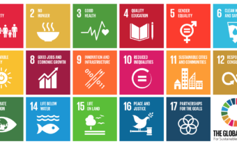bloc_Chart_of_UN_Sustainable_Development_Goals